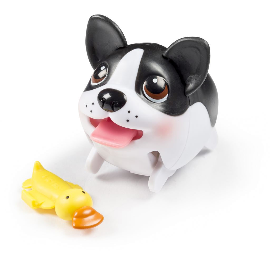 Popular Doodle Chubby Adorable Dog - full1  Snapshot_422758  .jpg