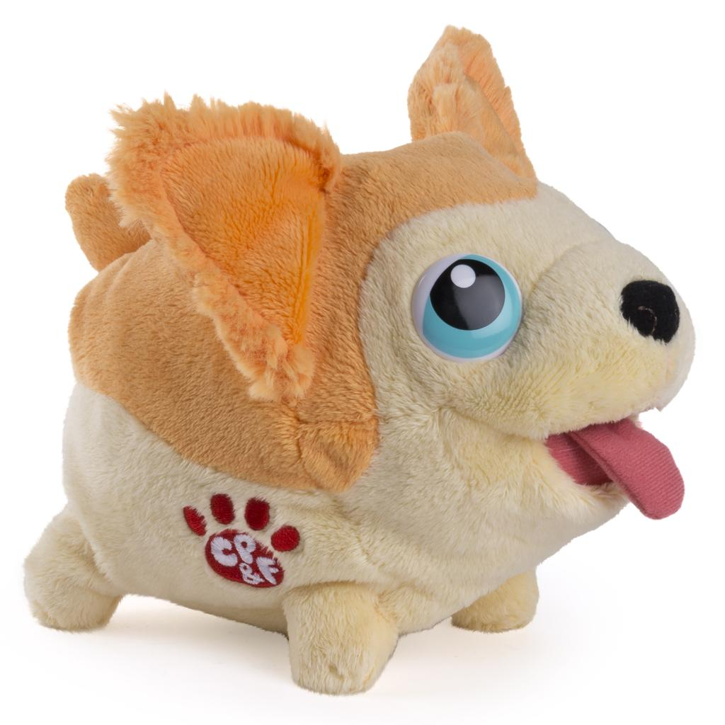 Amazing Chihuahua Chubby Adorable Dog - full1  Collection_84968  .jpg