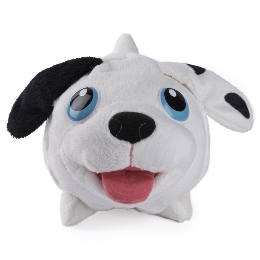 Wonderful Dalmation Chubby Adorable Dog - full2  Photograph_255259  .jpg