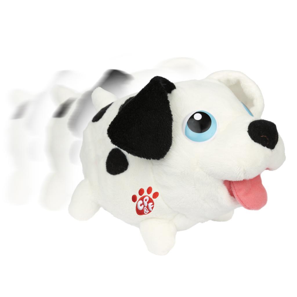 Best Dalmation Chubby Adorable Dog - full4  2018_394351  .jpg