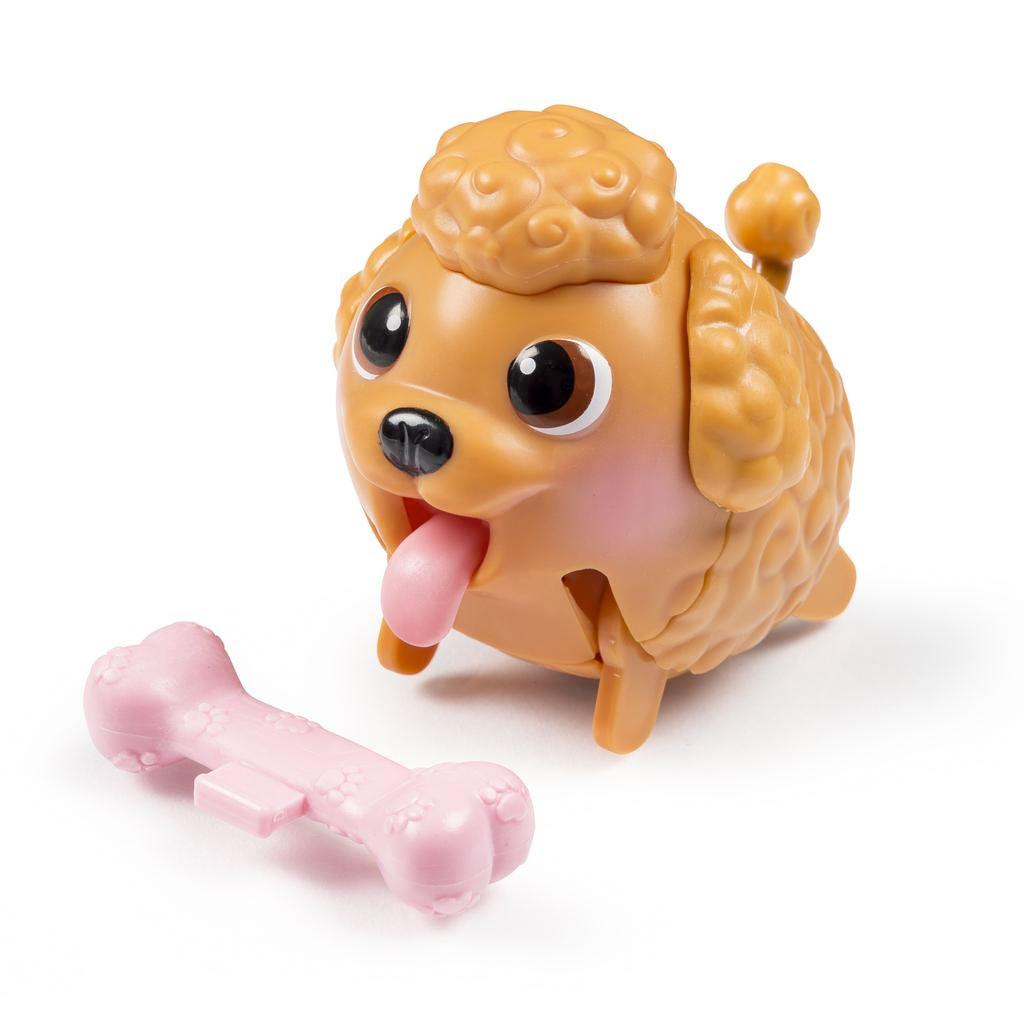 Good Poodle Chubby Adorable Dog - full1  HD_20452  .jpg